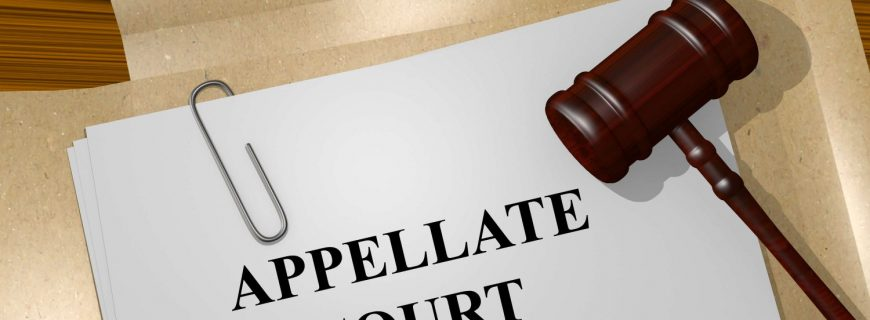 Assistance in Court Appeals